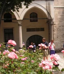 Розы у Врат Блаженства во дворце Топкапы