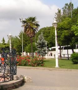 Клумбы с розами на площади Ипподром