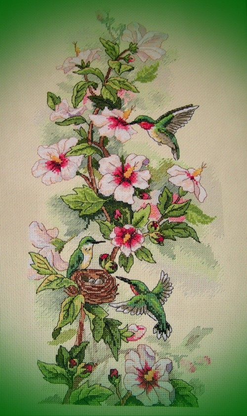Колибри - готовая вышивка