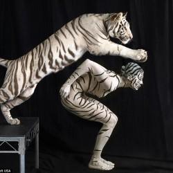 Ani-Human - серия портретов. Человек и белый тигр.