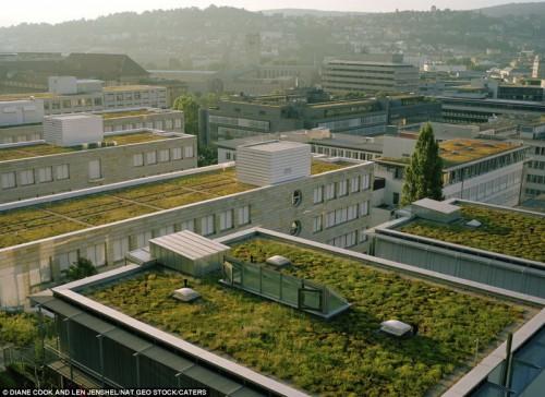 Сады на крышах в городе Штутгарт, Германия