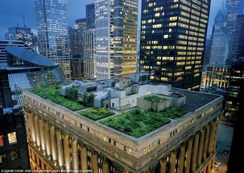 Сады на крыше небоскребов Чикаго