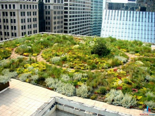 Сад на крыше в Чикаго