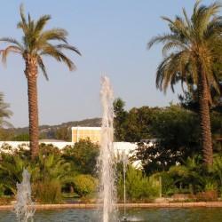 GRAND HABER HOTEL - пруд в парке