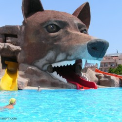 GRAND HABER HOTEL - аквапарк голова волка